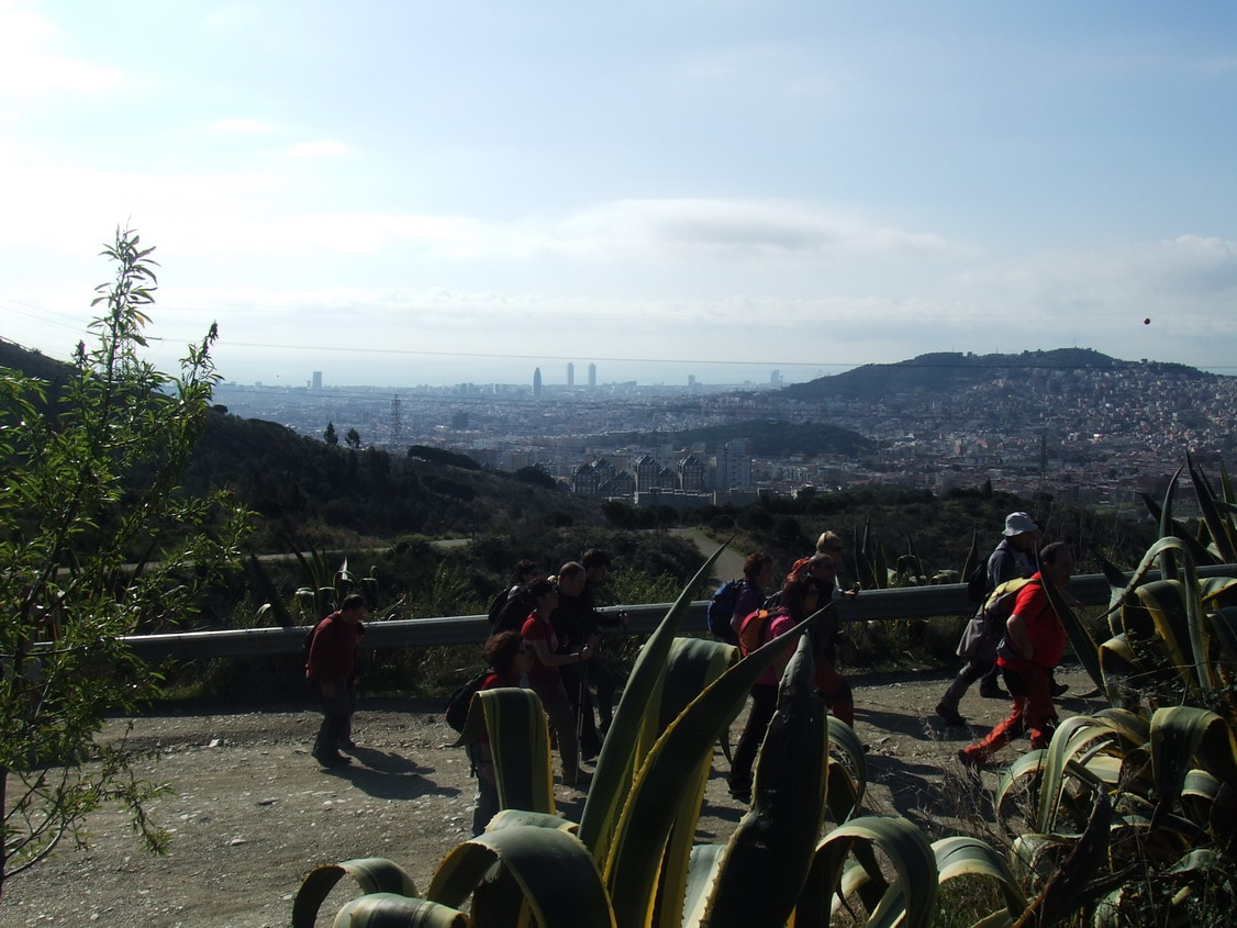 Collserola-_Cam._Solid._mar_2011_web5